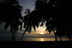 Ηλιοβασίλεμα κοντά στην παραλία στη Μαλαισία Στοκ Φωτογραφίες
