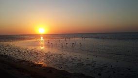 Ηλιοβασίλεμα λιμνοθαλασσών στοκ φωτογραφία με δικαίωμα ελεύθερης χρήσης