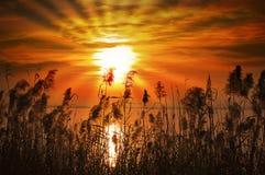 ηλιοβασίλεμα λιμνών της Ιταλίας garda Στοκ εικόνες με δικαίωμα ελεύθερης χρήσης