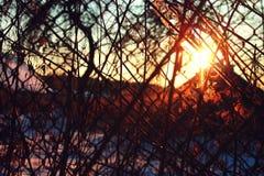 Ηλιοβασίλεμα μέσω του φράκτη στοκ εικόνες με δικαίωμα ελεύθερης χρήσης