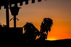 Ηλιοβασίλεμα με τις σκιαγραφίες Στοκ Φωτογραφία