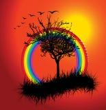 ηλιοβασίλεμα ουράνιων τόξων φθινοπώρου ελεύθερη απεικόνιση δικαιώματος