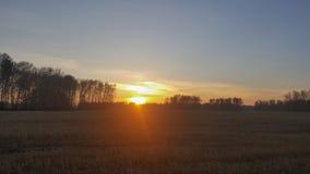 Ηλιοβασίλεμα πέρα από έναν τομέα έξω από την πόλη στοκ εικόνες