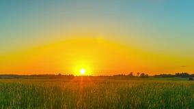 Ηλιοβασίλεμα πέρα από τον τομέα, πανοραμικό χρόνος-σφάλμα απόθεμα βίντεο