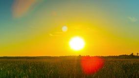 Ηλιοβασίλεμα πέρα από τον τομέα, πανοραμικό χρόνος-σφάλμα φιλμ μικρού μήκους