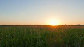 Ηλιοβασίλεμα πέρα από τον τομέα, πανοραμικό φιλμ μικρού μήκους