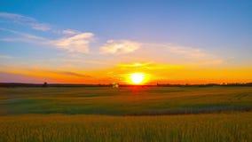 Ηλιοβασίλεμα πέρα από τον τομέα σίτου, χρόνος-σφάλμα φιλμ μικρού μήκους