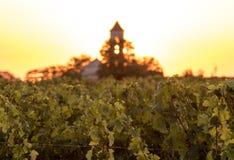 Ηλιοβασίλεμα πέρα από τους αμπελώνες Montagne κοντά σε Άγιο Emilion Gironde, Aquitaine στοκ εικόνα με δικαίωμα ελεύθερης χρήσης