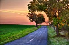 Ηλιοβασίλεμα πέρα από το λιβάδι, το δρόμο ασφάλτου και το πλατύφυλλο δέντρο στο βράδυ φθινοπώρου, ουρανός, Στοκ Φωτογραφίες