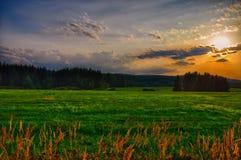 Ηλιοβασίλεμα πέρα από το λιβάδι στο θερινό βράδυ, φως του ήλιου, ουρανός, πράσινη χλόη χαλάρωση ατμόσφαιρας Τοπίο επαρχίας Στοκ εικόνα με δικαίωμα ελεύθερης χρήσης
