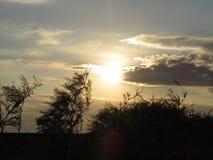 Ηλιοβασίλεμα πίσω από τα δέντρα με τα σύννεφα και έναν δρόμο στο πρώτο πλάνο στοκ φωτογραφία με δικαίωμα ελεύθερης χρήσης