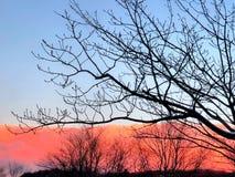 Ηλιοβασίλεμα που καίγεται στον ορίζοντα Στοκ φωτογραφίες με δικαίωμα ελεύθερης χρήσης