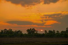 Ηλιοβασίλεμα σε έναν τομέα χωρών στη βορειοανατολική Ταϊλάνδη, Ασία στοκ φωτογραφία με δικαίωμα ελεύθερης χρήσης