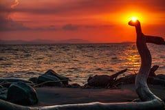Ηλιοβασίλεμα σε μια αποβάθρα στις παραλίες των Καραϊβικών Θαλασσών στοκ εικόνες