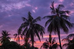 Ηλιοβασίλεμα σε τροπικό Lombok στην Ινδονησία Στοκ εικόνες με δικαίωμα ελεύθερης χρήσης