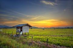 Ηλιοβασίλεμα σε Tegudon, Kota Belut, Sabah, Μπόρνεο, Μαλαισία στοκ εικόνες