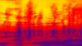 Ηλιοβασίλεμα στα δάση Στοκ Φωτογραφία