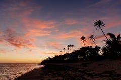 Ηλιοβασίλεμα στην ακτή κοραλλιών των Φίτζι στοκ εικόνα