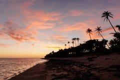Ηλιοβασίλεμα στην ακτή κοραλλιών των Φίτζι στοκ εικόνα με δικαίωμα ελεύθερης χρήσης