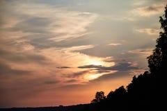 Ηλιοβασίλεμα στην εκστρατεία Κόκκινο ηλιοβασίλεμα στο δάσος διανυσματική απεικόνιση