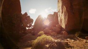 Ηλιοβασίλεμα στην κοιλάδα ερήμων, ΗΠΑ στοκ εικόνα