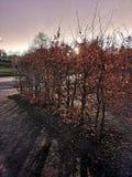 Ηλιοβασίλεμα στη βροχή και τον ήλιο της Ιρλανδίας στοκ φωτογραφία