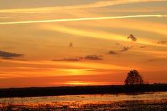 Ηλιοβασίλεμα στη Φλώριδα στοκ εικόνα με δικαίωμα ελεύθερης χρήσης