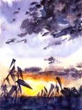 Ηλιοβασίλεμα στους τομείς - απεικόνιση watercolor διανυσματική απεικόνιση