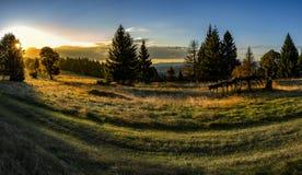 Ηλιοβασίλεμα στο δασικό τοπίο επαρχίας στοκ φωτογραφία
