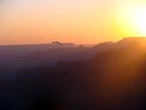 Ηλιοβασίλεμα στο μεγάλο φαράγγι στοκ φωτογραφίες