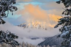 Ηλιοβασίλεμα στο νεφελώδες βουνό μέσω του χειμώνα δέντρων Στοκ εικόνες με δικαίωμα ελεύθερης χρήσης