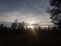Ηλιοβασίλεμα στο πάρκο στοκ φωτογραφίες