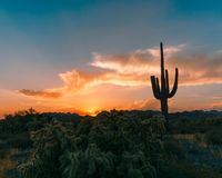 Ηλιοβασίλεμα της Αριζόνα στοκ εικόνες με δικαίωμα ελεύθερης χρήσης