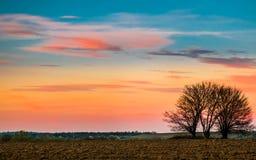 Ηλιοβασίλεμα τομέων και ένα μόνο δέντρο στοκ φωτογραφία με δικαίωμα ελεύθερης χρήσης