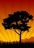 ηλιοβασίλεμα τοπίων Στοκ εικόνα με δικαίωμα ελεύθερης χρήσης
