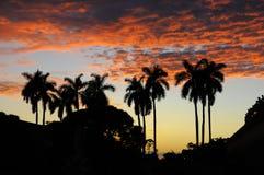 ηλιοβασίλεμα τροπικό Στοκ Εικόνα