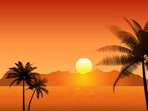 ηλιοβασίλεμα τροπικό ελεύθερη απεικόνιση δικαιώματος