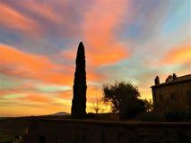 Ηλιοβασίλεμα, χρώματα, κυπαρίσσι, ουρανός, ρομαντική και μαγική ατμόσφαιρα στοκ εικόνα με δικαίωμα ελεύθερης χρήσης