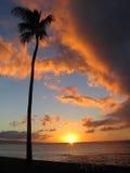 ηλιοβασίλεμα ύφους Maui Στοκ Εικόνα