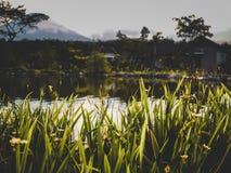 Ηλιοβασίλεμα Cinematic στην Ινδονησία στοκ φωτογραφία με δικαίωμα ελεύθερης χρήσης