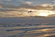 Ηλιοβασίλεμα Daytona Beach στοκ εικόνα