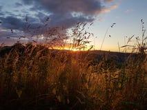 Ηλιοβασίλεμα Hill κορμών Στοκ Φωτογραφίες