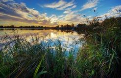ηλιοβασίλεμα massaciuccoli λιμνών Στοκ Εικόνες