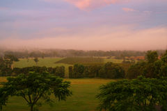 ηλιοβασίλεμα vinyard στοκ φωτογραφίες