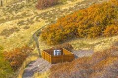 Ηλιοφώτιστος λόφος με το πολύβλαστο φύλλωμα στη Σωλτ Λέικ Σίτυ στοκ φωτογραφία με δικαίωμα ελεύθερης χρήσης
