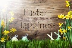 Ηλιόλουστα αυγό και λαγουδάκι, Gras, ευτυχία Πάσχας κειμένων ελεύθερη απεικόνιση δικαιώματος