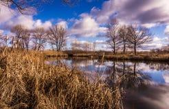 Ηλιόλουστη ημέρα άνοιξη στην Αγγλία Γραφική φύση την πρώιμη άνοιξη Στοκ Εικόνες