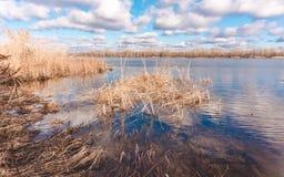Ηλιόλουστη ημέρα άνοιξη στην Αγγλία Μπλε νερό σε μια ελώδη λίμνη Στοκ Εικόνες