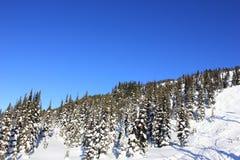 Ηλιόλουστη ημέρα σε ένα winterwonderland στον όμορφο συριστήρα στον Καναδά, Βρετανική Κολομβία στοκ εικόνα με δικαίωμα ελεύθερης χρήσης