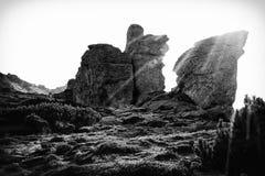 Ηλιόλουστη ημέρα Carpathians, ο έχων νώτα Stone Στοκ εικόνα με δικαίωμα ελεύθερης χρήσης